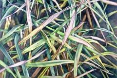 "Grasslands Jungle. Watercolour on paper, 22"" x 30"". Private Collection"