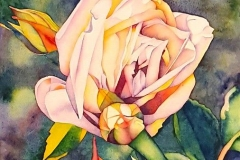 """Remembering the Roses - Beginnings. Watercolour on paper, 22"""" x 15"""""""