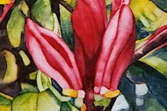 """Spring's Promise: 2. Watercolour on Aquabord, 6"""" x 6"""""""