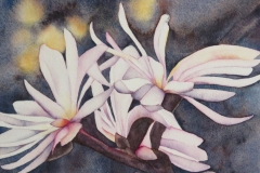 """Light in a Dark Spring #2. Watercolour on paper on board, 8"""" x 10"""""""