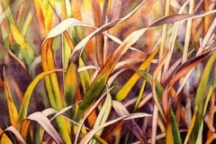 "Riversedge: Grasses in Autumn. Watercolour on paper, 30"" x 22"""